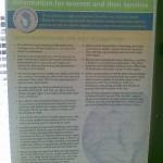 Successful Breastfeeding Info